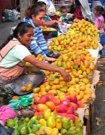 Mango sellers in the market